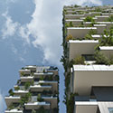 Trees in the Sky: Challenges of a Forest City